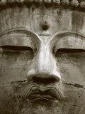 Great Buddha Statue, Kamakura, Daibutsu, Kanto, Japan Photographic Print by Steve Vidler