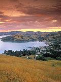 Akaroa, Banks Peninsula, South Island, New Zealand Photographic Print by Doug Pearson