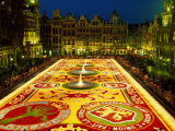 Grand Place, Floral Carpet, Brussels, Belgium Photographic Print by Steve Vidler