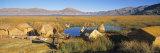 Islas Flotantes, Lake Titicaca, Peru Photographic Print by Gavin Hellier