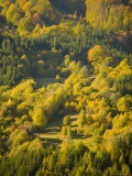 Fall Colors, Viseu de Sus, Maramures, Romania Photographic Print by Russell Young