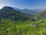 Rice Terraces of Bangaan at Banaue, Luzon Island, Philippines Photographic Print by Michele Falzone