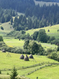 Landscape of Carpathians, Zakarpattia Oblast, Transcarpathia, Ukraine Photographic Print by Ivan Vdovin