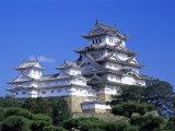 Himeji Castle, Honshu, Japan Photographic Print by Steve Vidler