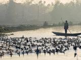 Hue, Vietnam Photographic Print by Peter Adams