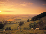 Coaley Peak, Dursley, Cotswolds, England Papier Photo par Peter Adams