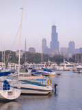 Skyline Including Sears Tower, Chicago, Illinois Photographic Print by Alan Copson