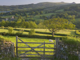 Sheepstor, Dartmoor, Devon, England Photographic Print by Peter Adams
