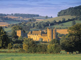 Stokesay Castle, Shropshire, England Photographic Print by Peter Adams