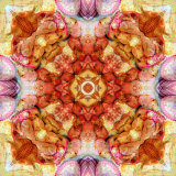 Colseaworld Mandala, no. 3 Photographic Print by Alaya Gadeh