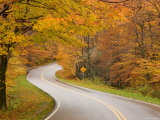 Road in Forest, Vermont, New England, USA Photographic Print by Demetrio Carrasco