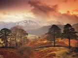 Borrowdale, Lake District, Cumbria, England Photographic Print by Peter Adams