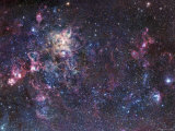 The Tarantula Nebula Photographic Print by  Stocktrek Images