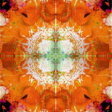 Moods of Mandala, no. 3 Photographic Print by Alaya Gadeh