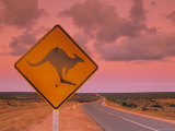 Road Sign, Shark Bay National Park, Western Australia, Australia Photographie par Doug Pearson