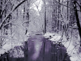 Snow Covered Trees along Creek in Winter Landscape Lámina fotográfica por Jan Lakey