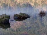 Lake with Reflection of Forest Photographic Print by Eddie Mchugh