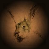 Listening Hare Papier Photo par Tim Kahane