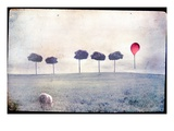 Lamb by Row of Trees and Red Balloon Fotografie-Druck von Mia Friedrich