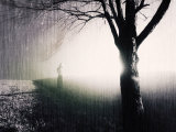 Standing in the Rain under Tree Photographic Print by Jan Lakey