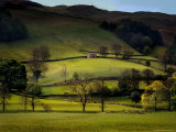 Yorkshire Dales Spring Photographic Print by Jody Miller