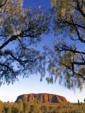 Ayers Rock, Northern Territory, Australia Photographic Print by Doug Pearson