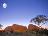 The Olgas, Northern Territory, Australia Fotografie-Druck von Peter Adams
