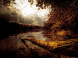 October Photographic Print by Stephen Arens