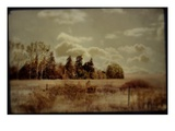 Fenced Field with Trees and Grass Photographic Print by Mia Friedrich
