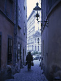 Vienna, Austria Photographic Print by Alan Copson
