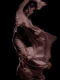 Flamenco Photographic Print by Tim Kahane
