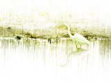 Crane Standing in Shallow Waters Photographic Print by Jan Lakey