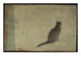 Blurred Cat Sitting Reprodukcja zdjęcia autor Mia Friedrich