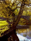 Cotswold Bridge Photographic Print by Jody Miller