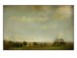 Field of Crops and Trees Photographic Print by Mia Friedrich