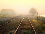 Foggy on the Tracks Photographic Print by Jody Miller
