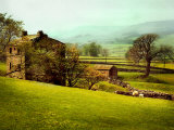 In the Yorkshire Dales Photographic Print by Jody Miller