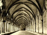 Salisbury Arches Photographic Print by Judith Bartos