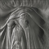 Sheer Waves over Nude Breasts Photographic Print by Monika Brand