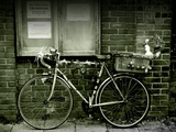 12 Days of Christmas Bicycle Photographic Print by Tim Kahane