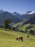 Alpbach, Tirol, Austria Photographic Print by Doug Pearson