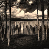 Pilings at the Riverbank Photographic Print by Jody Miller