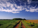 Meadow Bank, Prince Edward Island, Canada Photographic Print by Walter Bibikow