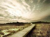Boardwalk Winding over Sand and Brush Photographic Print by Jan Lakey