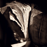 Detail of Antique Pages Photographic Print by Edoardo Pasero