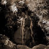 Naiad Photographic Print by Lydia Marano