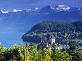 Spiez, Lake Thun, Switzerland Photographic Print by Peter Adams
