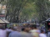 La Rambla, Barcelona, Spain Photographic Print by Jon Arnold