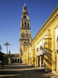 Mezquita, Cordoba, Andalucia, Spain Photographic Print by Rex Butcher