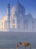 Taj Mahal, Agra, India Photographic Print by Peter Adams